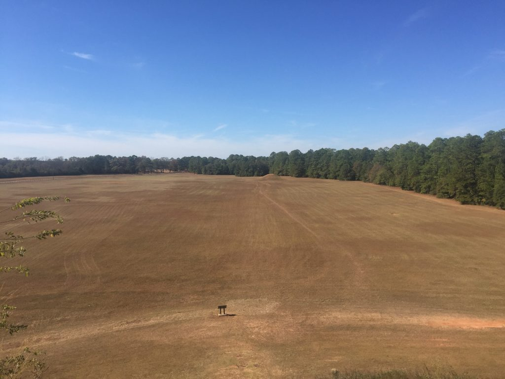 A view from the top of the main mound at Kolomoki Mounds State Park, in Georgia.