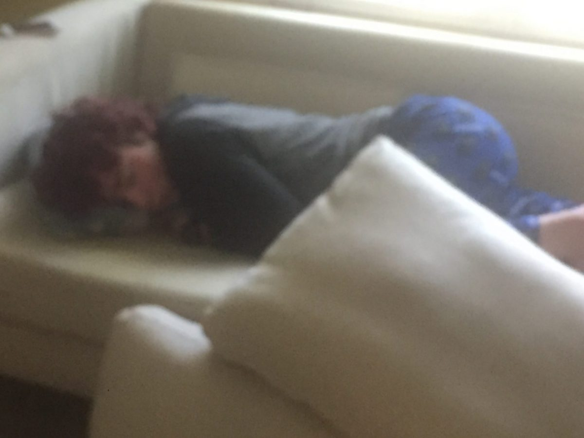 Avner, passed out on the sofa
